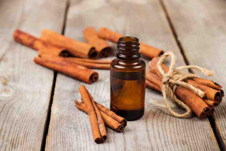 Comment prendre l'huile essentielle de cannelle ?