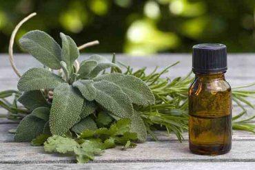 Quelle huile essentielle pour irritation vulvaire ?