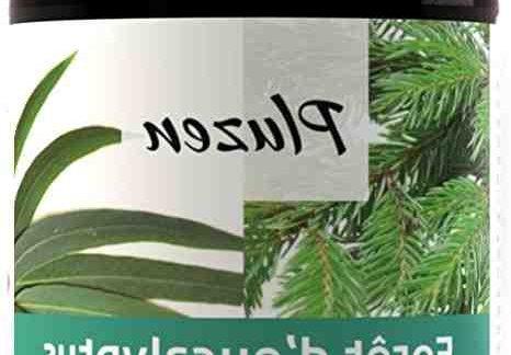 Quelle différence entre Eucalyptus globulus et Radiata ?