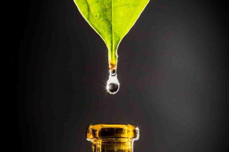 Quelle est la meilleure façon de diffuser des huiles essentielles ?